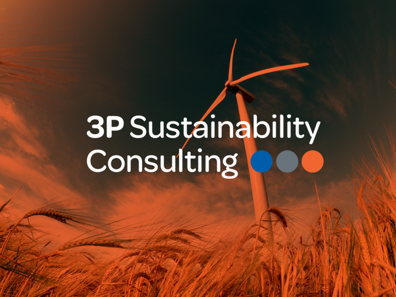 3p_sustainability_consulting